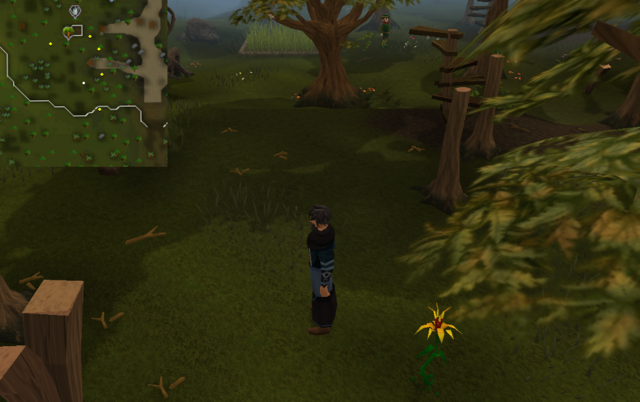 File:Compass clue Tree Gnome Stronghold north-west of entrance.png