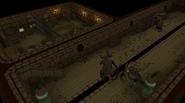 Nora's cellar