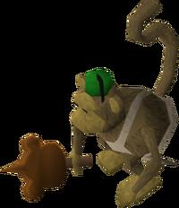 Chimp ice chimp