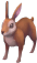 Common brown rabbit detail.png