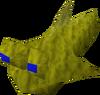 Mudskipper hat detail