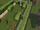 Hedgehide.png