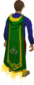 Herblore master cape equipped