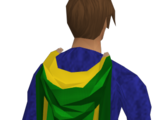 Master cape of Accomplishment