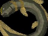 Raw short-finned eel