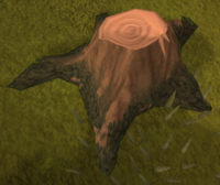 Reg. tree stump