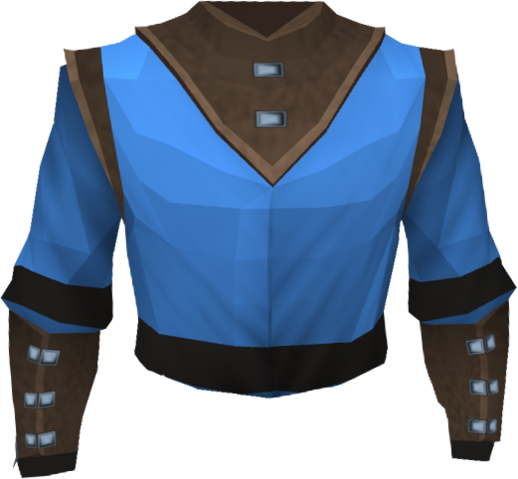 File:Wizard robe top (t) detail.png