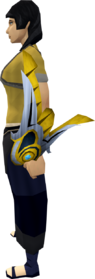 Armadyl buckler equipped