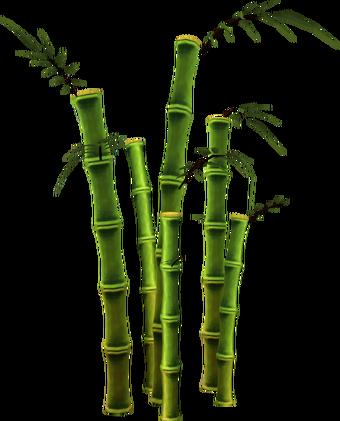 Bamboo Tree Runescape Wiki Fandom