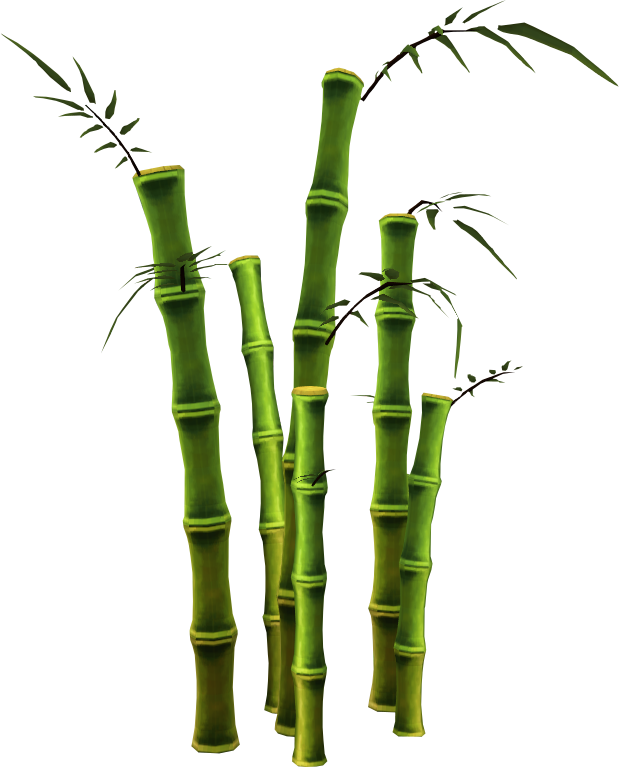 image bamboo tree png runescape wiki fandom powered by wikia