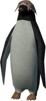 Red Raktuber penguin (ray)