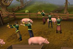 Quando a Porca Torce o Rabo