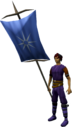 Banner (Asgarnia) equipped.png