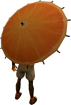 Orange parasol equipped