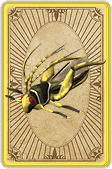 Thieving locust card detail