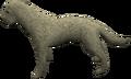 Labrador (white) pet.png