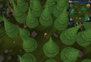Scan clue Tirannwn in small clearing north of Hunter training icon east of Tyras Camp