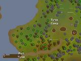 Tyras Camp
