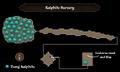 Kalphite Nursery map.png