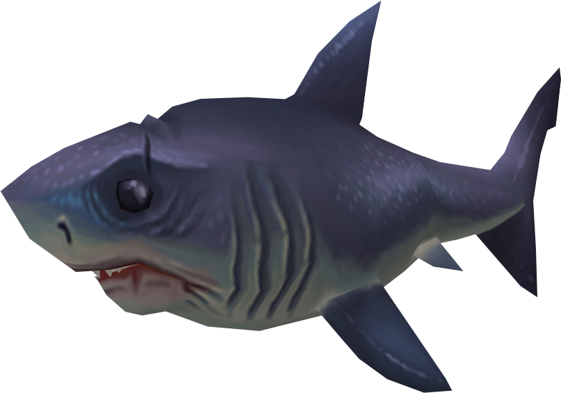 Sayln the shark runescape wiki fandom powered by wikia
