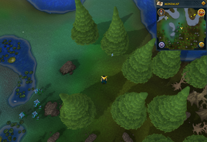Scan clue Tirannwn south of Elf Camp fishing spot