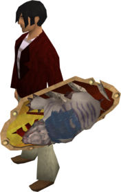 Anti-dragon shield (mole) equipped