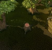 Hidey-hole Lumberyard