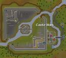 International Castle Wars Tournament