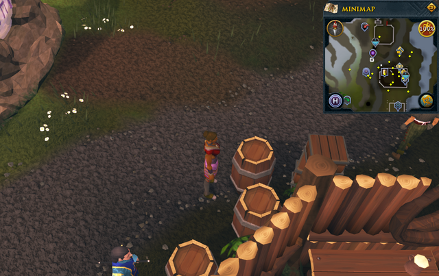 File:Simple clue Pick and Lute barrel.png
