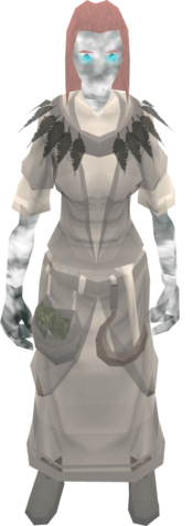 Ghostly druid outfit equipped