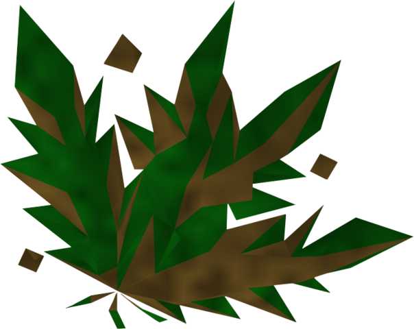 File:Grimy dwarf weed detail.png