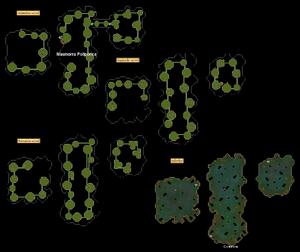 Masmorra Polipórica mapa