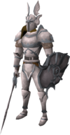 Paladin Hero outfit equipped
