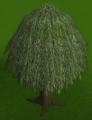 Willow tree built.png