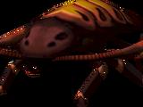 Warped cockroach