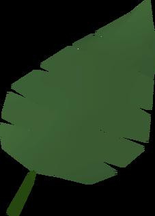 File:Palm leaf detail.png