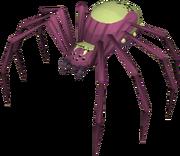 Spider herald