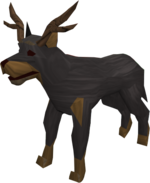 Oddie (antlers)