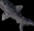 Raw tiger shark detail.png