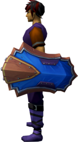 Wizard shield equipped