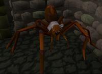 Aranha da masmorra
