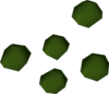 Cadantine seed detail