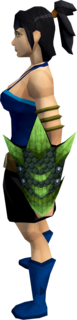 Green dragonhide shield equipped