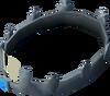 Crown of Loyalty (4 year) detail