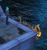 Embarcando na doca das Almas