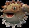 Pufferfish follower pet token detail