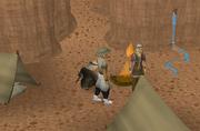 Ullek archeologen kamp