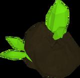 Divine shard rock