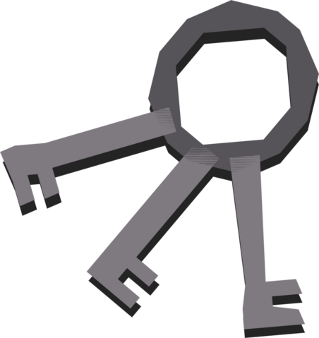 File:House keys detail.png