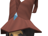 Wizard Elriss